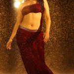 Tamannah-Ups-Her-Hotness-For-Bengal-Tiger
